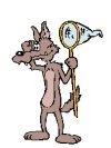 dacman's avatar - Coyote