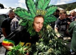 Legalize Pot Poll