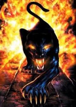 ncantoral's avatar - PSACMZX