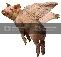 pigsNtrees's avatar - pigsNtrees