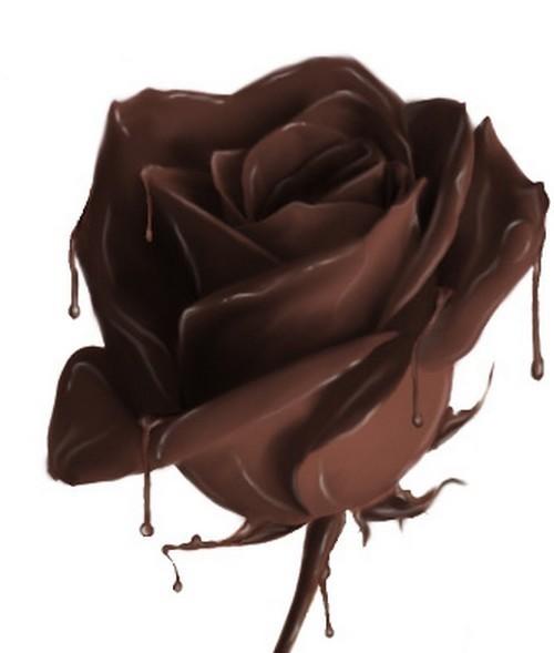 DrannyMa7's avatar - chocolate